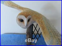 BORDER FINE ARTS Barn Owl in Church Window