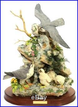 Border Fine Art Call Of The Falcon Ltd Etd 56/200