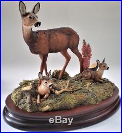 Border Fine Arts 1998 Vintage Bo255 Collectors In A Sunny Glade Deer (bfa31)