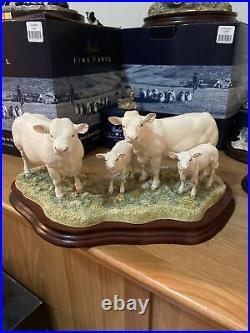 Border Fine Arts BO184 Charolais Cow Family Figure