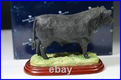 Border Fine Arts Cattle County Show Aberdeen Angus Bull A0740