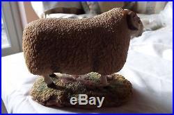 Border Fine Arts Cheviot Ram Sheep