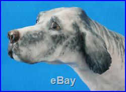 Border Fine Arts Dog English Setter Grey And White Anne Wall (c)1978