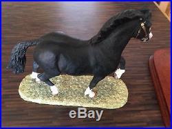 Border Fine Arts Figure Welsh Cob Stallion (Black) B 0240A Anne Wall