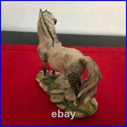 Border Fine Arts Horse WELSH MOUNTAIN PONY rare