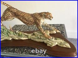 Border Fine Arts L132 Cheetah, Limited Edition