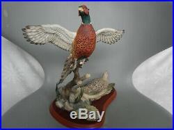 Border Fine Arts Large Bird Pheasant Rising Game Birds A1392