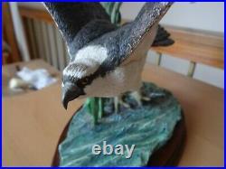 Border Fine Arts Limited Edition Osprey