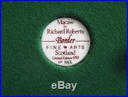 Border Fine Arts MACAW L76 BEAUTIFUL COLOURS 20 High LTD ED of 950 RARE