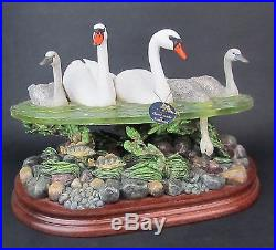 Border Fine Arts More Up than Down Swan Figurine Made Scotland LE 71/500 BO923