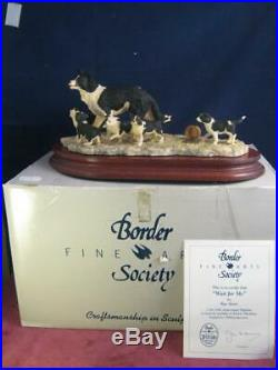Border Fine Arts Wait For Me Border Collie & Puppies COA BFA SOC6 R Ayres BOX
