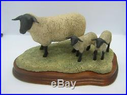 Border Fine Arts figure Suffolk Sheep Ewe and Lambs L87