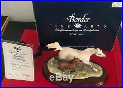 Border Fine Arts rare Arab Mare & Foal L136 boxed + cert