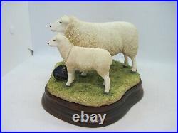 Border Fine Arts sheep figure Lleyn Ewe and Lambs B0975