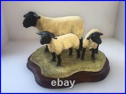 Border Fine arts B0778 Suffolk Ewe and Lambs LTD 196/1250 New Boxed Very Rare