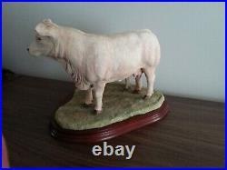 Border fine art charolais cow and calf