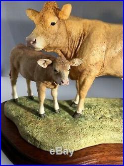 Border fine arts Ltd Ed 497/1250 Blonde DAquitaine Cow And Calf New Boxed Rare