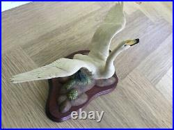 Border fine arts Whooper swan PSO7 used excellent condition boxed