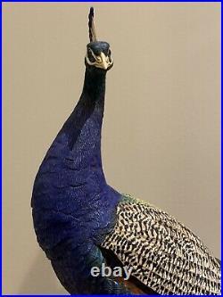 Fabulous Rare Border Fine Arts Regal Splendour Peacock Limited Millenium Piece