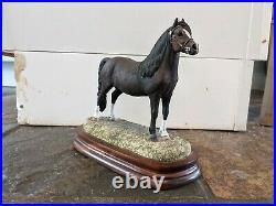 Fine Arts Welsh Mountain Pony Stallion section A