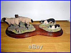Large Border Fine Arts Suffolk Ewes And Collies Signed Ayres Excellent