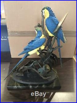 New Border Fine Arts Blue and Gold Macaws B0327