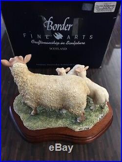 New Border Fine Arts Charollais Ewe and Lambs sheep limited ed. L121