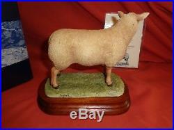 Rare Border Fine Arts BFA Charollais Ram Sheep B0774 Limited Ed Boxed Ayres