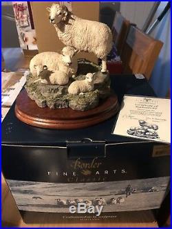 Shetland Sheep Family Border Fine Arts